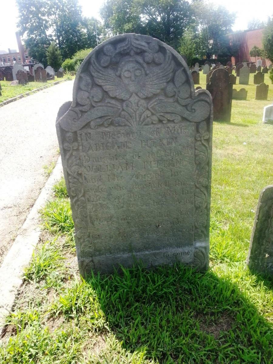 William Pitkin Net Worth